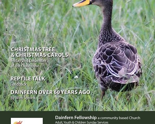 Infocus your community magazine – Dainfern Nature Association November 2016