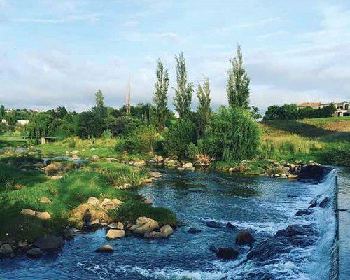 Infocus your community magazine – Dainfern Nature Association August 2016
